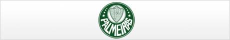 Sociedade-Esportiva-Palmeiras