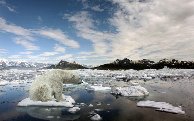 Um dos principais problemas do aquecimento global é o descongelamento das calotas polares. (Foto: Reprodução)
