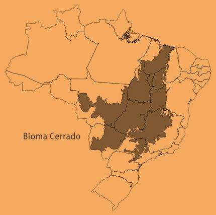 Na parte mais escura do mapa está a localização original do bioma do Cerrado.