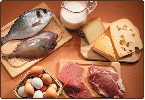 Alimentos ricos em proteínas e fibras