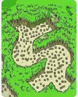 Código Florestal Brasileiro 2011