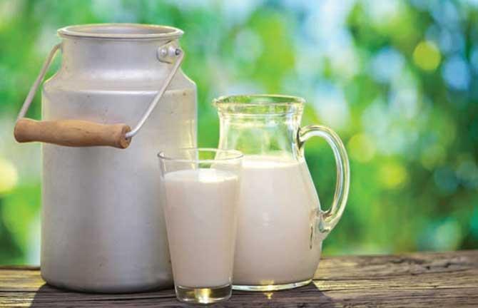 O leite é um dos alimentos mais indicados para prevenir a osteoporose