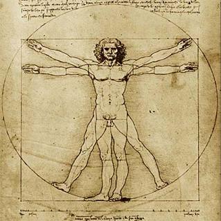 Homem vitruviano, Leonardo da vinci