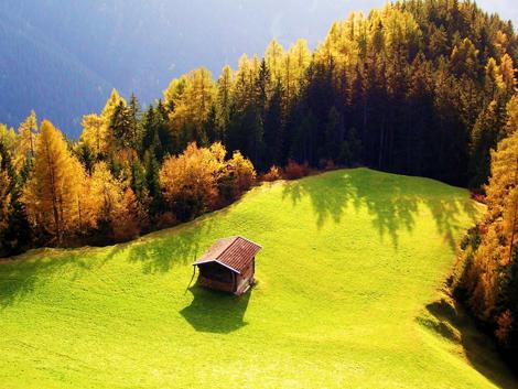 Maravilhoso campo
