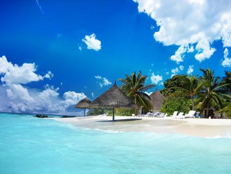 Praia paisagem linda