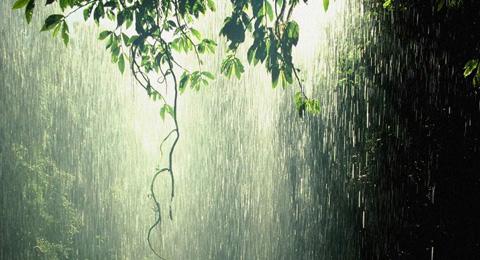 A precipitação é responsável por retornar a maior parte da água doce