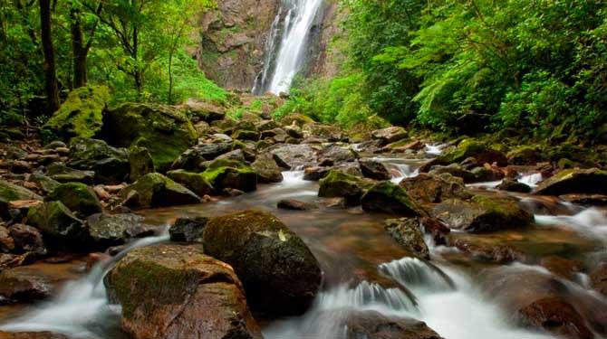A natureza é tudo o que é criado de maneira natural sem a interferência do ser humano.