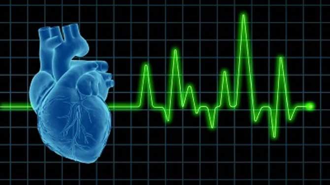 O coração é responsável por bombear o sangue por todo o nosso corpo.