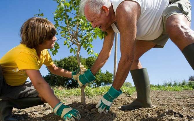 Preserve o meio ambiente ele é essencial para a nossa vida.