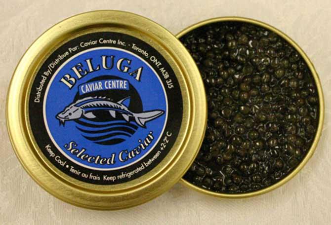 O caviar beluga é o mais caro de todos