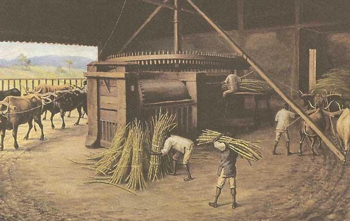 Escravos-de-Engenho