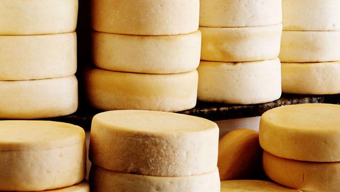 Por ser rico em proteínas e leucina, o queijo é um excelente alimento para fortalecer os músculos.