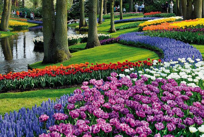 Local fica a apenas 80km de Amsterdã, capital da Holanda