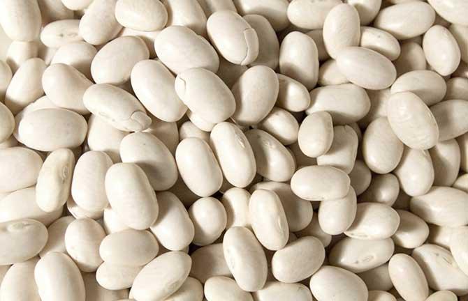 O feijão branco é muito utilizado em saladas e em pratos com frango